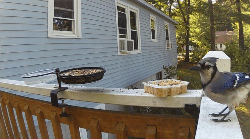 campark t20 setup