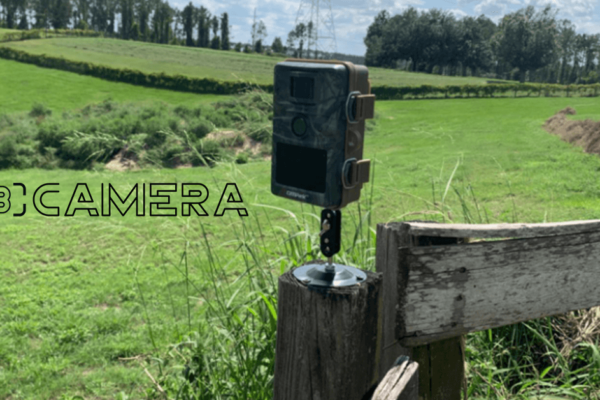Campark T70 Review| Campark T70 Trail Camera Setup