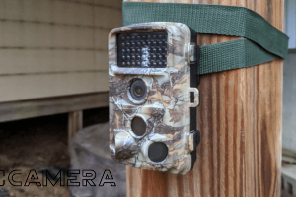 Campark T80 Trail Camera Review 2021: Magic Trail Camera