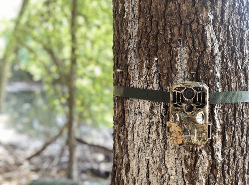 Toguard h80 setup