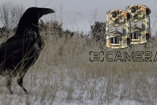 Wosoda Trail Camera Reviews 2021: The Best Trail Camera For Most People