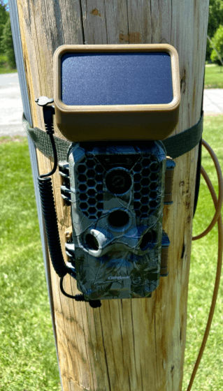 campark t200 trail camera setup